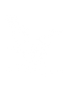 Kotkan Vepas Ky